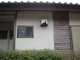 s-IMG_1933IMG_2106.jpg