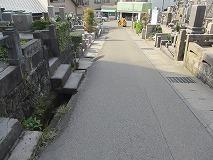 s-IMG_5919.jpg