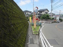 s-IMG_8362.jpg